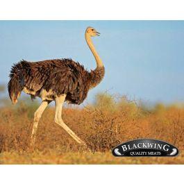 Ostrich Neck Bones (4 inch.)