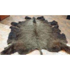 Bison Winter Hide - Large (Large Hide 6.5x7)